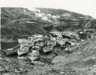 Hibb's Cove, Port de Grave, 1960s